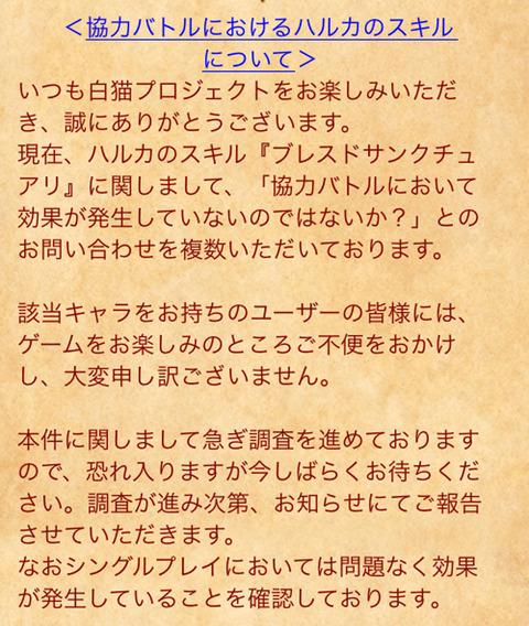 IMG_1101[1]